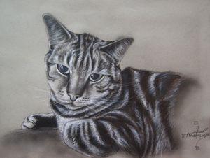 Portrait of Daxter - Jonathan Anderson Artist