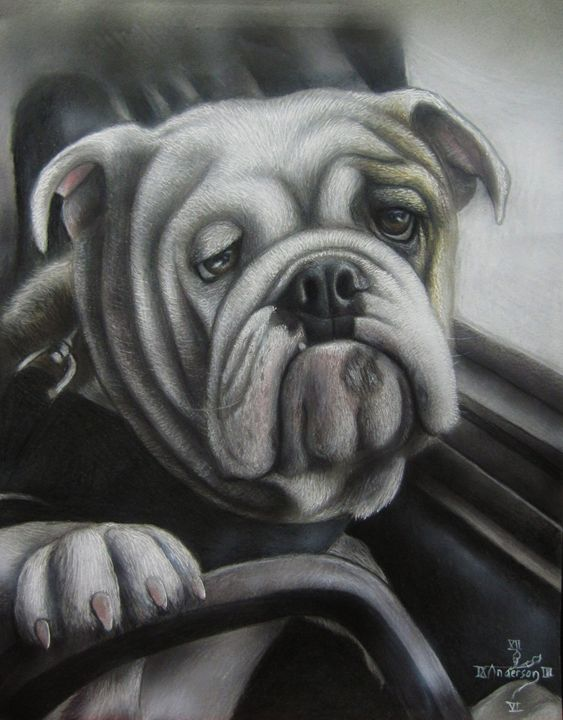 Bulldog at the wheel - Jonathan Anderson Artist