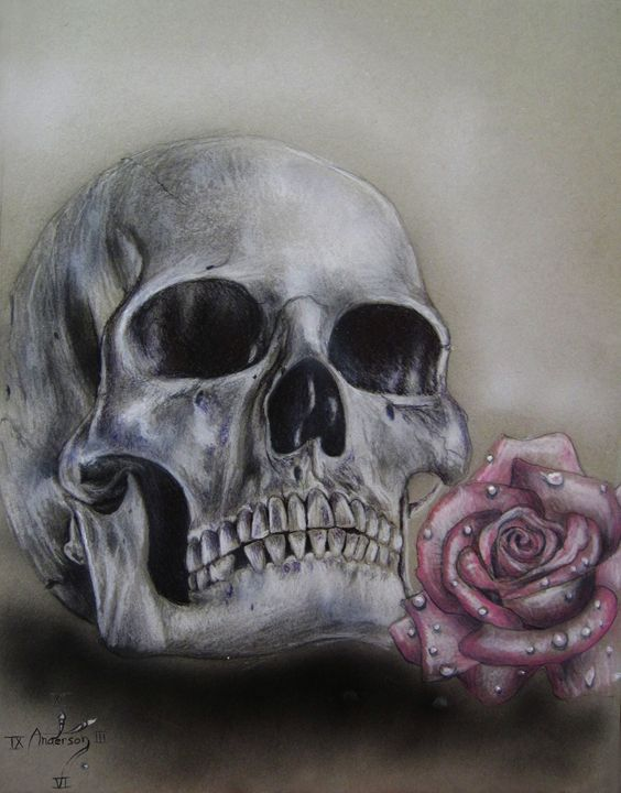 Skull and rose - Jonathan Anderson Artist