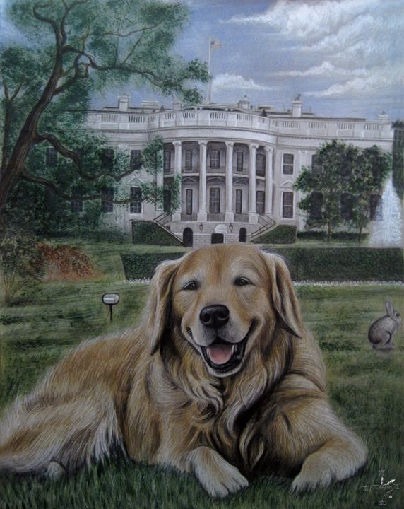 Kelli On The White House Lawn - Jonathan Anderson Artist