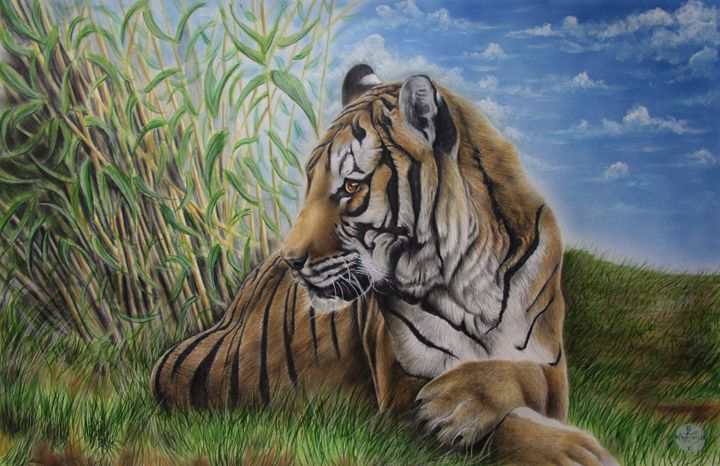 Tiger in the Grass - Jonathan Anderson Artist