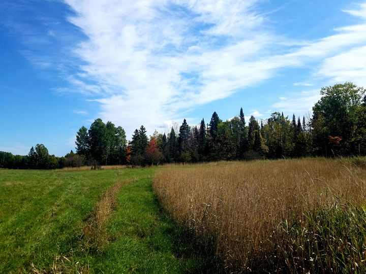 Hay field of colors - Sally's photography