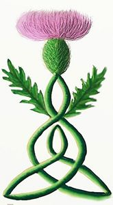 Celtic Mother of Thistle