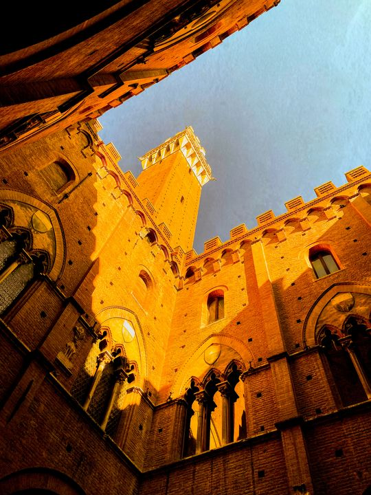 The Torre del Mangia - Logan B