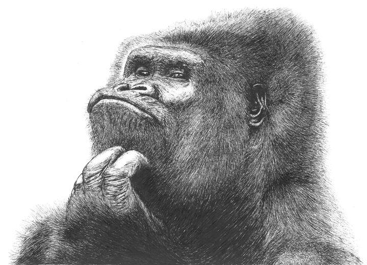 Gorilla - Nasir Nadzir