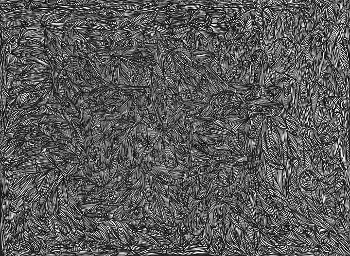 Random Flow - Nasir Nadzir