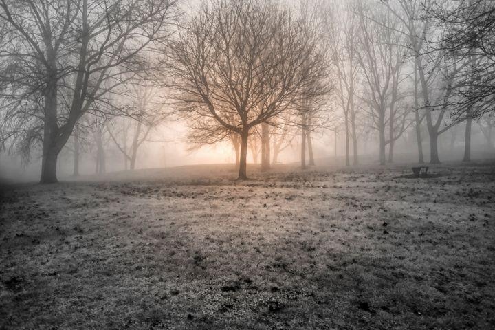 Trench Mist - Simon Hark