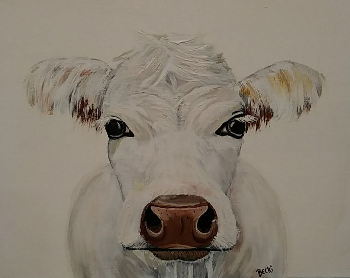 White cow - Becki