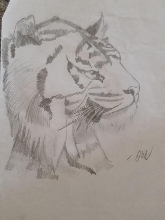 Tiger head - Olivia's Cartoon drawings and greeting cards