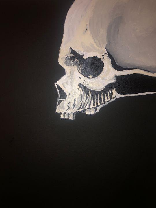 Human Skull - Diamondfineartstudio