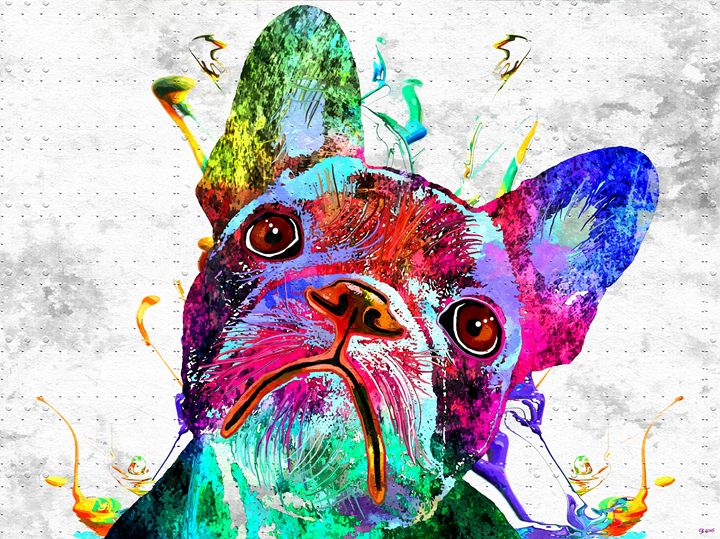 French Bulldog Colored Grunge - Daniel Janda