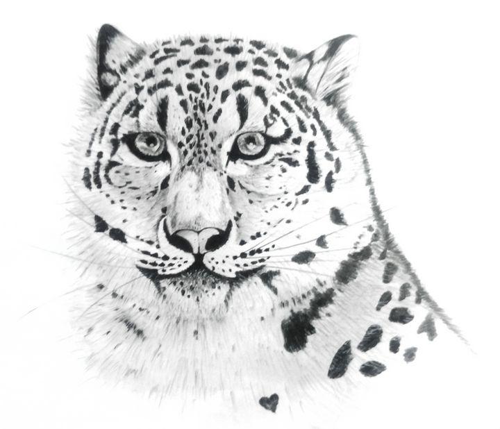 Snow Leopard - Ka.ta.s.art