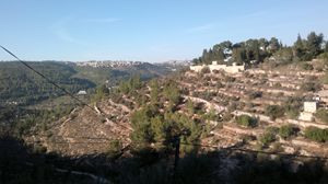 Mountain slope in Israel