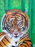 Tiger in me