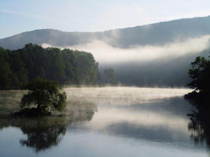 Morning Fog - Jacqueline Rodriguez