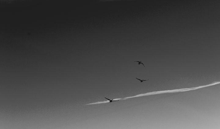 Departure - Jacqueline Rodriguez