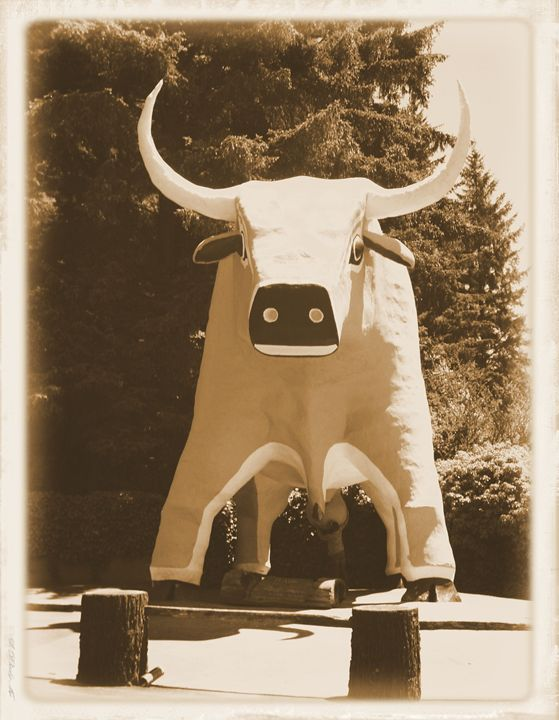 Blue The Ox - Heritage Art
