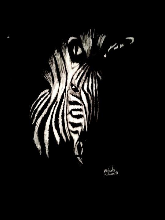Zebra - Mohab's