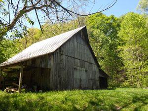 Barn wood fever