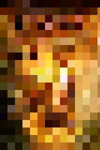 Portal - Mel Beasley ARPS