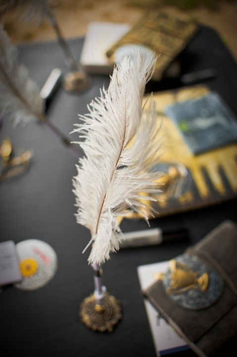 Feather Quill - Emily O'Donnell's Fine Art Photography