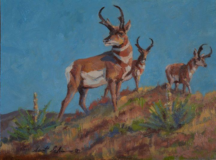 Three Bucks - Scott Scherer Fine Art
