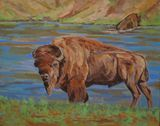 bull bison oil painting