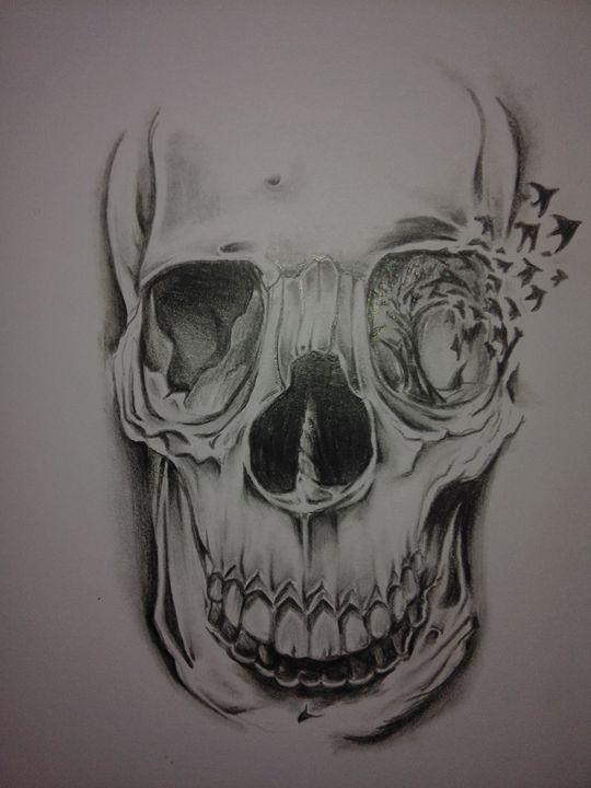 Skull - Locolizard3