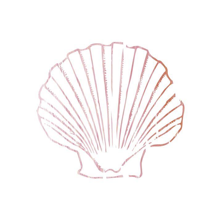 Pink Seashell. - Erin Gardner