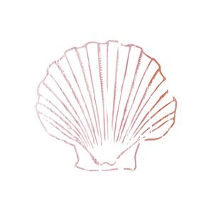 Pink Seashell.