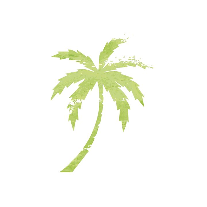 Green Palm Tree print - Erin Gardner