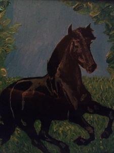 Black Stallion Galloping