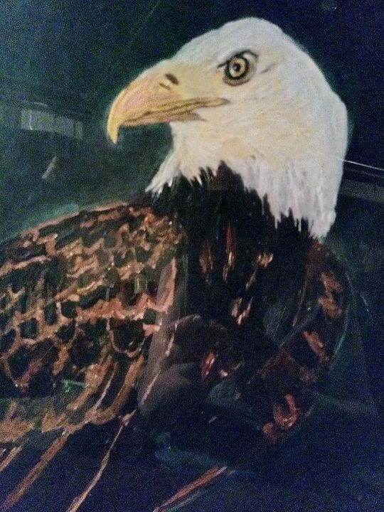 Eagle by Night - Williams
