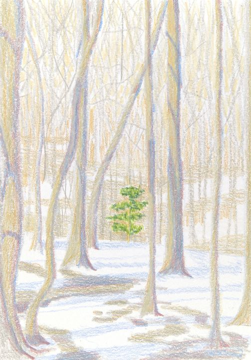 Green Tree - Bethany Lee's Colored Pencil Landscapes