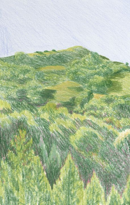 Hill in Orinda - Bethany Lee's Colored Pencil Landscapes