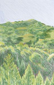 Hill in Orinda