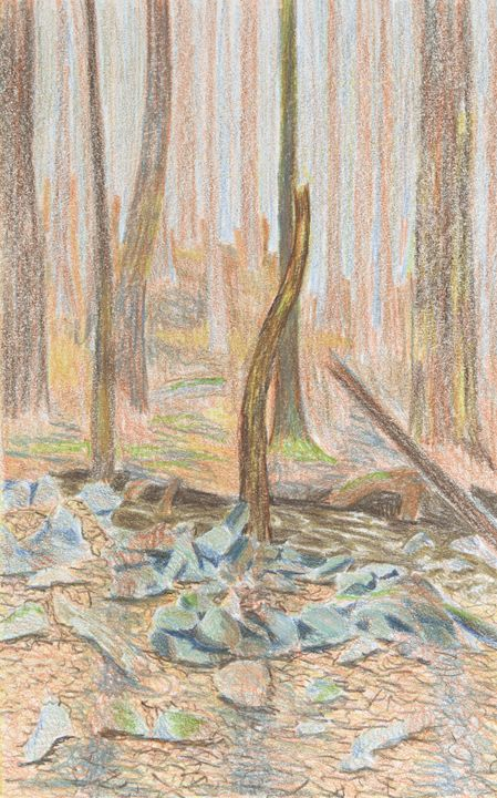Catskills Forest - Bethany Lee's Colored Pencil Landscapes