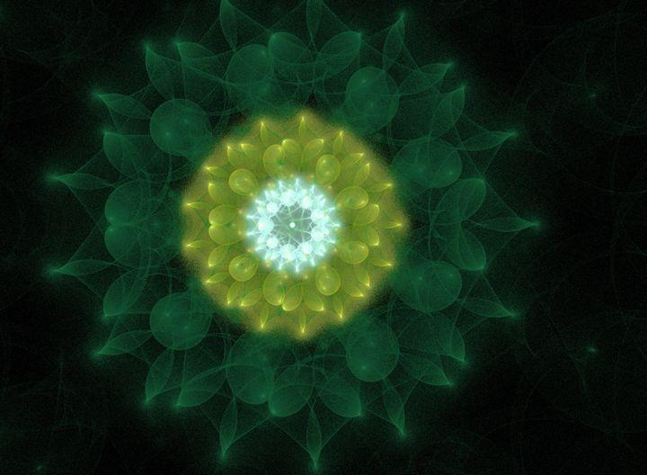 Flower of the Nimphs - FRARTS
