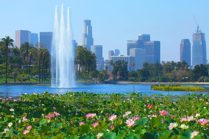 Lotus Blooms & Los Angeles Skyline - Ram Vasudev