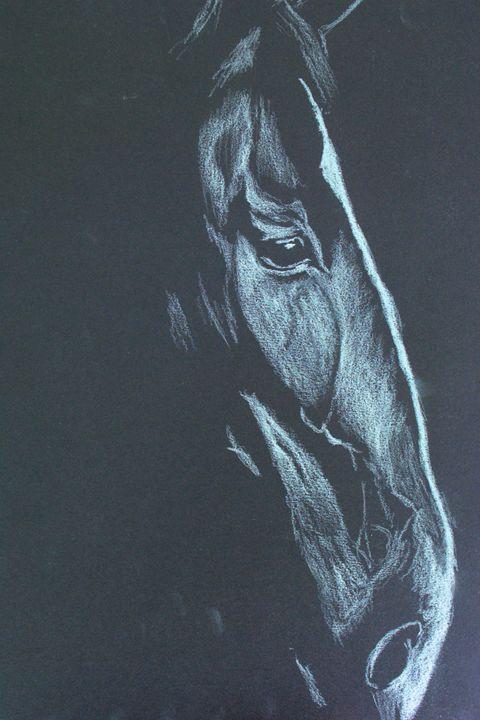 Black Horse - Mark Docker