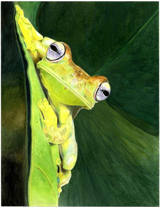 Tree Frog - Emma Mooring