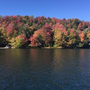 COLORFUL TREES ON THE LAKE