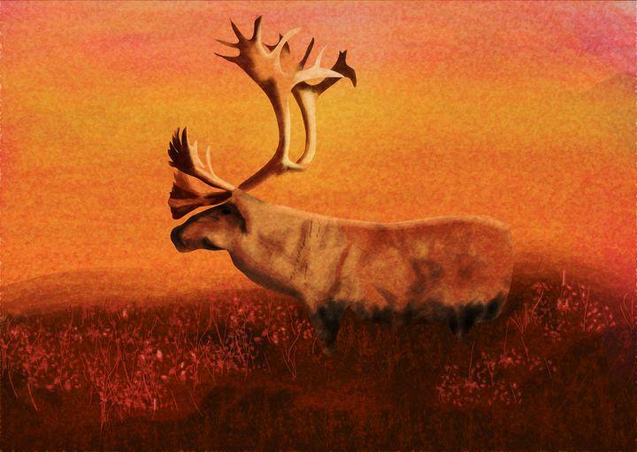 Newfoundland Qalipu (Caribou) - mckayla paints