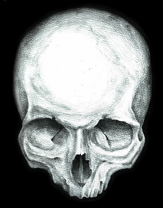 Skull study No.4 - Skullianz