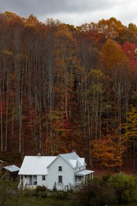 Cabin in the Woods - Nolyn Wise Photographs