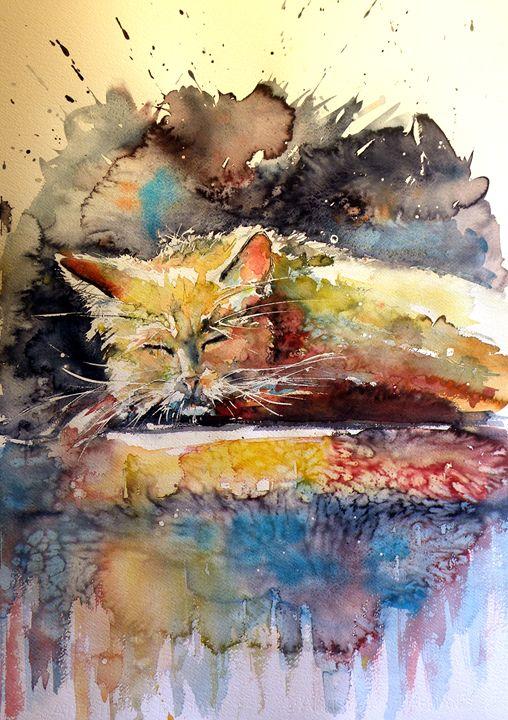 Old cat resting - kovacsannabrigitta