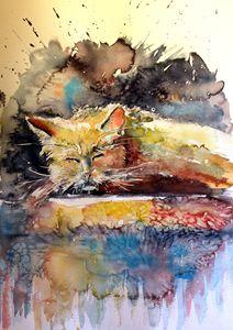 Old cat resting