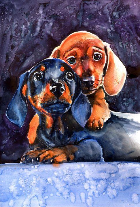 Dachshund puppies - kovacsannabrigitta