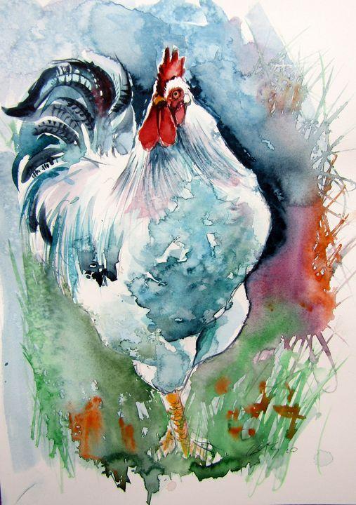 White rooster - kovacsannabrigitta