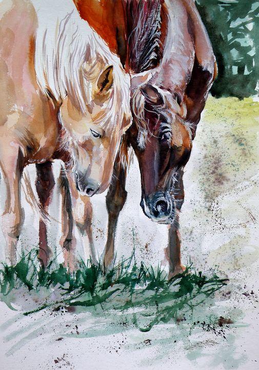 Horses friend - kovacsannabrigitta
